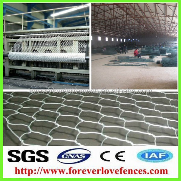 2015 cheap lowest price of galvanized chicken wire bird / rabbit cage mesh fence for sale