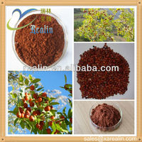 Natural Semen Ziziphi Spinosae P.E/Spine Date Seed Extract/Jujuba Seed Extract