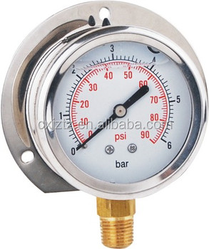 "2.5"" silicone oil pressure gauge with back flange panel mounted YN63ZC"