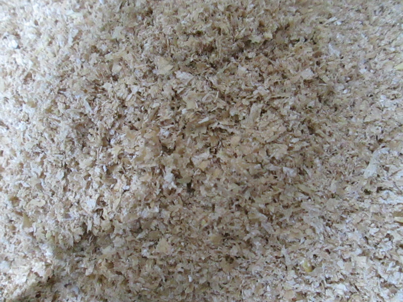 PAKISTAN WHEAT BRAN FOR ANIMAL CONSUMPTION