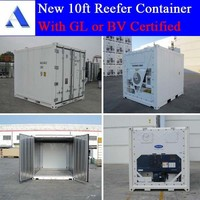 Daikin/Carrier/Thermo King unit for 10ft reefer containers for sale