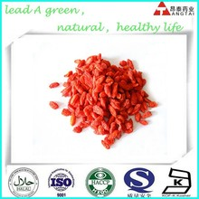 Chinese wolfberry Extract Powder goji berry powder goji fruit extract