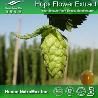 Hops Flower Extract Xanthohumol Powder 90% 100% Natural