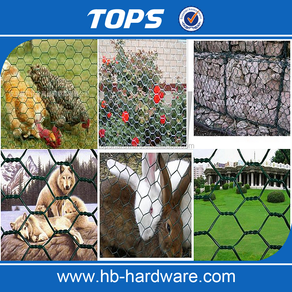 China Supply Fine Hexagonal Wire Netting/Gabion Slope Protection Netting/Cabion Wire Roll(Manufacturer)