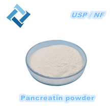Pancreatin[cp] - Buy Pancreatin[cp],Pharmaceutical Raw Materials,Pancreatin Product