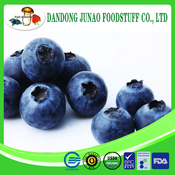 IQF new crop blueberry frozen dried blueberry price