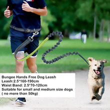 Factory Direct Wholesale Custom Bungee Reflective Hands Free Dog Leash For Runing