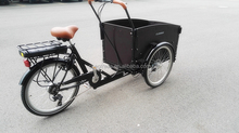 3 wheels electric cargo motor tricycle/cargo Bicycle/bike/trike