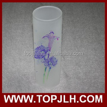 2017 Hot Sell Sublimation Glass Flower Vase, New Style Frosted Glass Bottle Vase