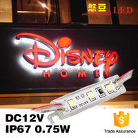 Miracle bean small size DC12V 3pcs SMD 2835 single color module led for back lights