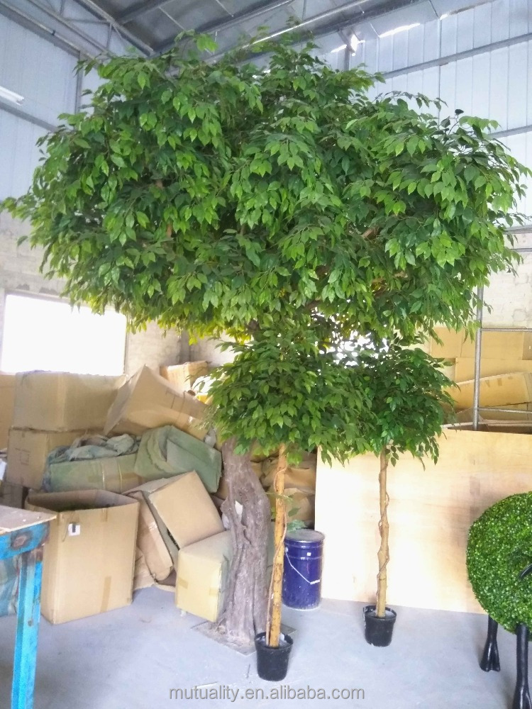 China Wholesale evergreen artifical tree plastic tree for virbrant decoration