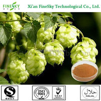 Xi'an Hops powdered extract,natural hops flower extract,humulus lupulus (hops) extract