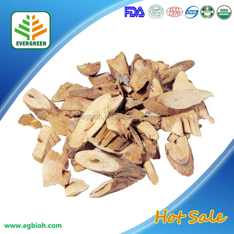 Angelica Root Extract Powder/Angelica/Dong Quai P.E. 20:1 in Bulk