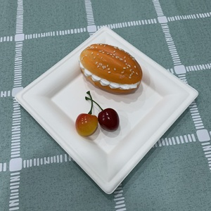 Bamboo pulp Bagasse disposable paper tableware lunch/dinner square plate