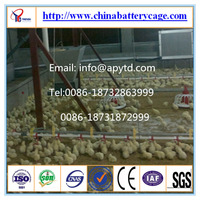 poultry plastic flooring
