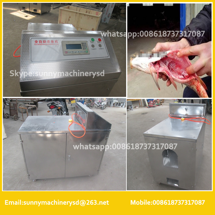easy use tilapia fish scaling gutting removal fillet cleaning machine