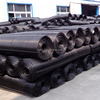 Composite Uniaxial HDPE PP Mesh Geogrid