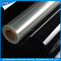 Factory Price Silk Screen Printing Eco solvent Transparent PET Film 120mic