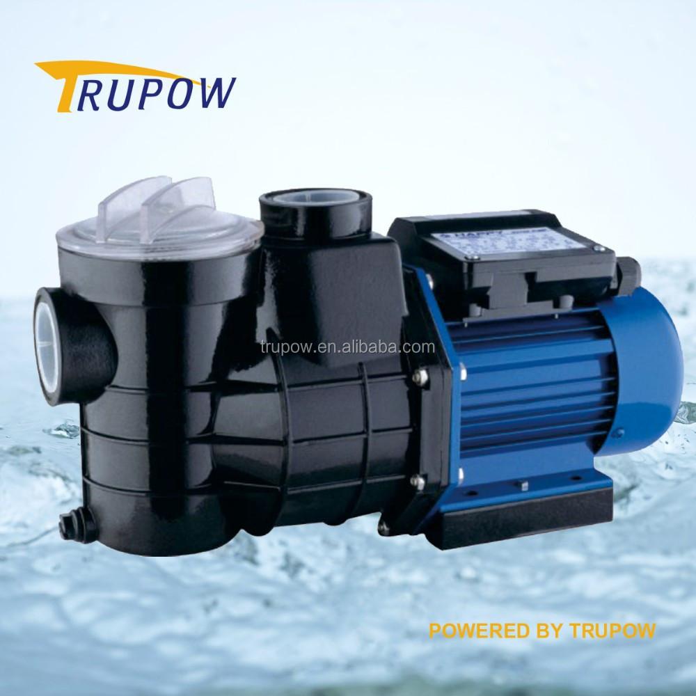 550 Watt Swimmingpool Filterpumpe Schwimmbadpumpe