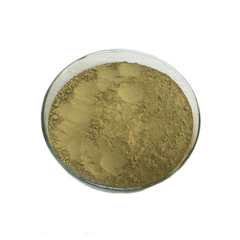 cnidium monnieri extract common cnidium fruit extract powder