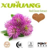 Manufactor offer high purity natural red clover leaf extract leaf extract