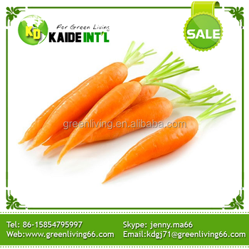 we export 2015 new harvest fresh carrot / competitive price