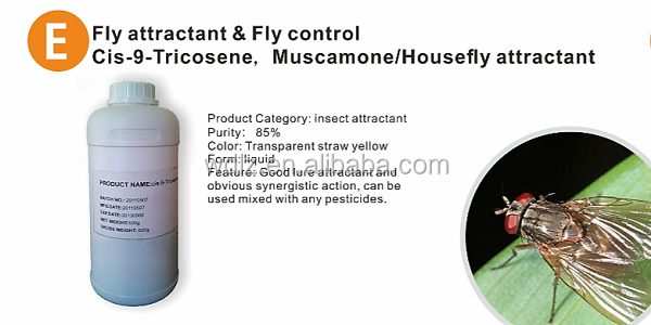 Efficiency and safety fly killing bait fly control