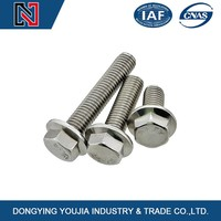 Customized Hardware Fasteners Fasteners Hexagon Bolts