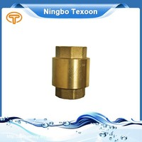 China Supplier High Quality Sanitary Clamp Check Valve