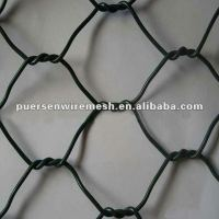 BWG 18 Chicken Cage Hexagonal wire mesh Manufacturing