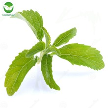 Best selling high quality pure stevia sweetener/ Stevia rebaudiana extract powder
