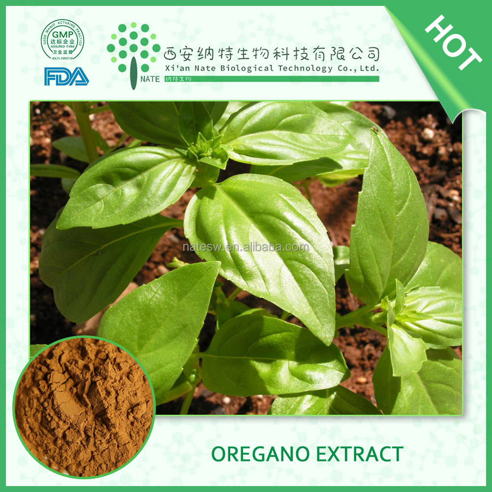 100% pure natural orgnic Oregano extract powder/low price carvacrol powder