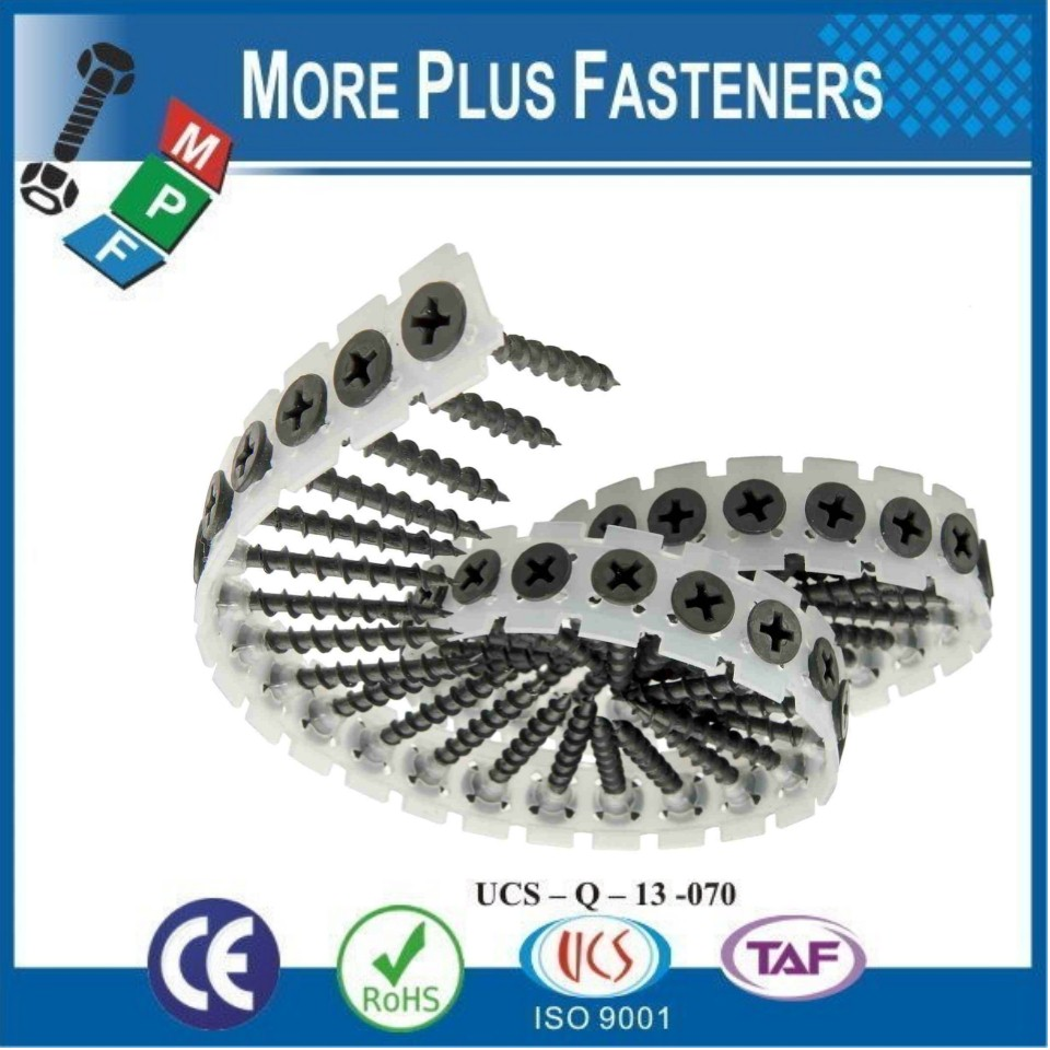 Made in Taiwan Philip Bugle or Trumpet Head Drywall Sharp Point or Self Drilling Screw Collated in Plastic Strip