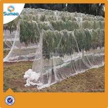 Modern best selling black anti hail net for apple tree