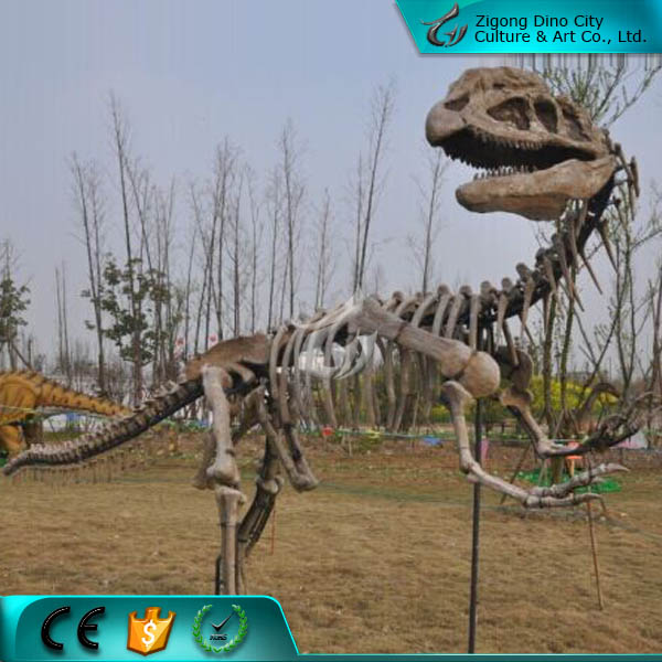 Animated Park Dinosaur Skeleton Replicas