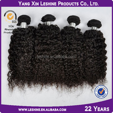 2014most popular 5A grade top quality virgin remy kinky curly hair weave malaysian blonde hair