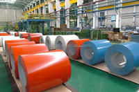 China professional supply Steel Plate galvanized steel coil