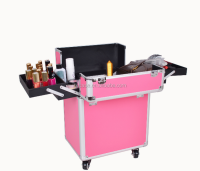 hairdresser trolley case,rolling suitcase,pilot makeup aluminum trolley case