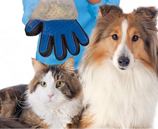 2017 Hot sale pet grooming glove