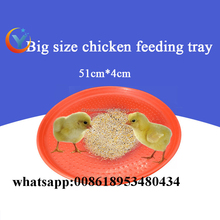Plastic baby chicken feeder tray poultry chicken feeding tray
