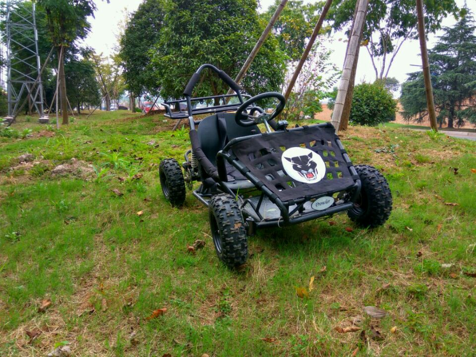 Safety and environmental protection electric kart for sale