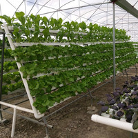 complete floating hydroponic system green house