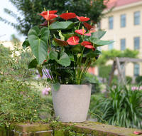 vases for home garden use outdoor planters large flower pot