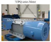 YJPQ Series VVVF Induction Motor IP55 IC416