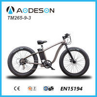 Electric bike of fat tyre for sonwy road beach with 7 speed gear derailleur for US