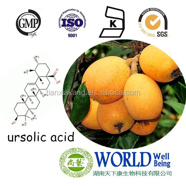 Free sample Loquat leaf extract Resistance to skin cancer ursolic acid 98% CAS NO.77-52-1