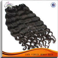 Unprocessed Shedding And Tangle Free Brazilian Virgin Hair Wholesale