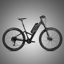 OEM service 48v 10ah carbon electric bike from Chinese factory