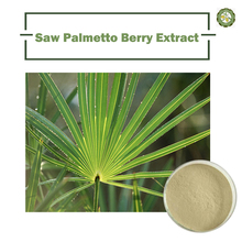100% natural and pure saw palmetto P.E/Serenoa Repens herbal extract Saw Palmetto Extract