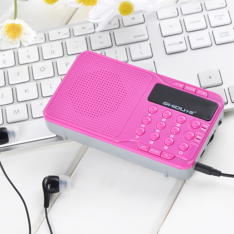 Hot sell mini portable fm radio with tf card slot SD-S95
